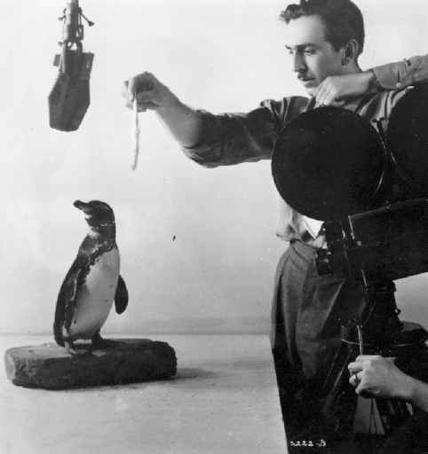 Walt Disney - Penguin