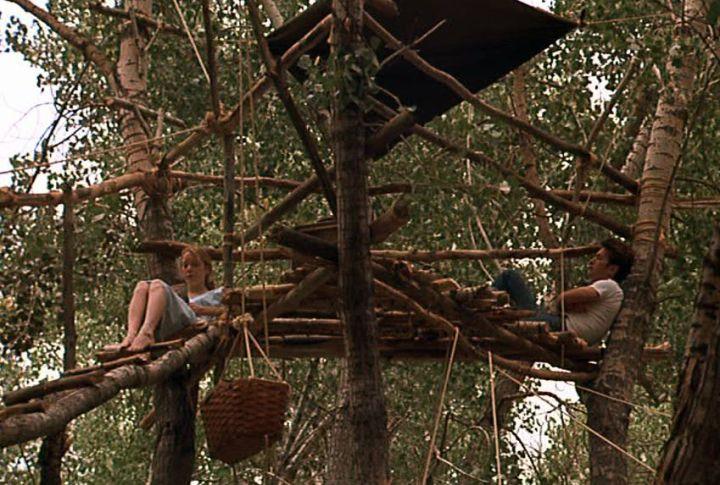 Badlands - Tree House