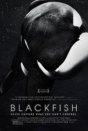 07.19.13 - Blackfish