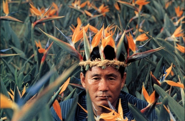 Takeshi Kitano - Birds of Paradise