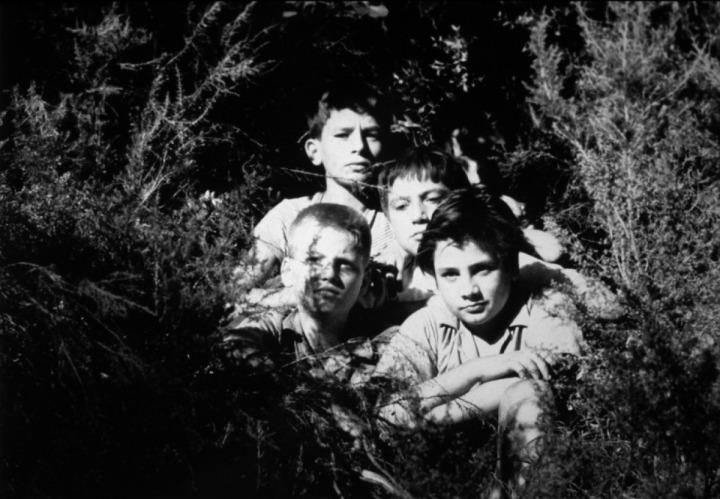 Les Mistons - The Brats