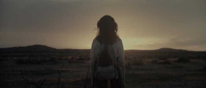 "Johanna Trujillo ""Lake Los Angeles"" (2014)"