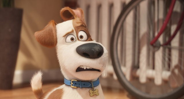Max in The Secret Life of Pets Courtesy of Universal Pictures